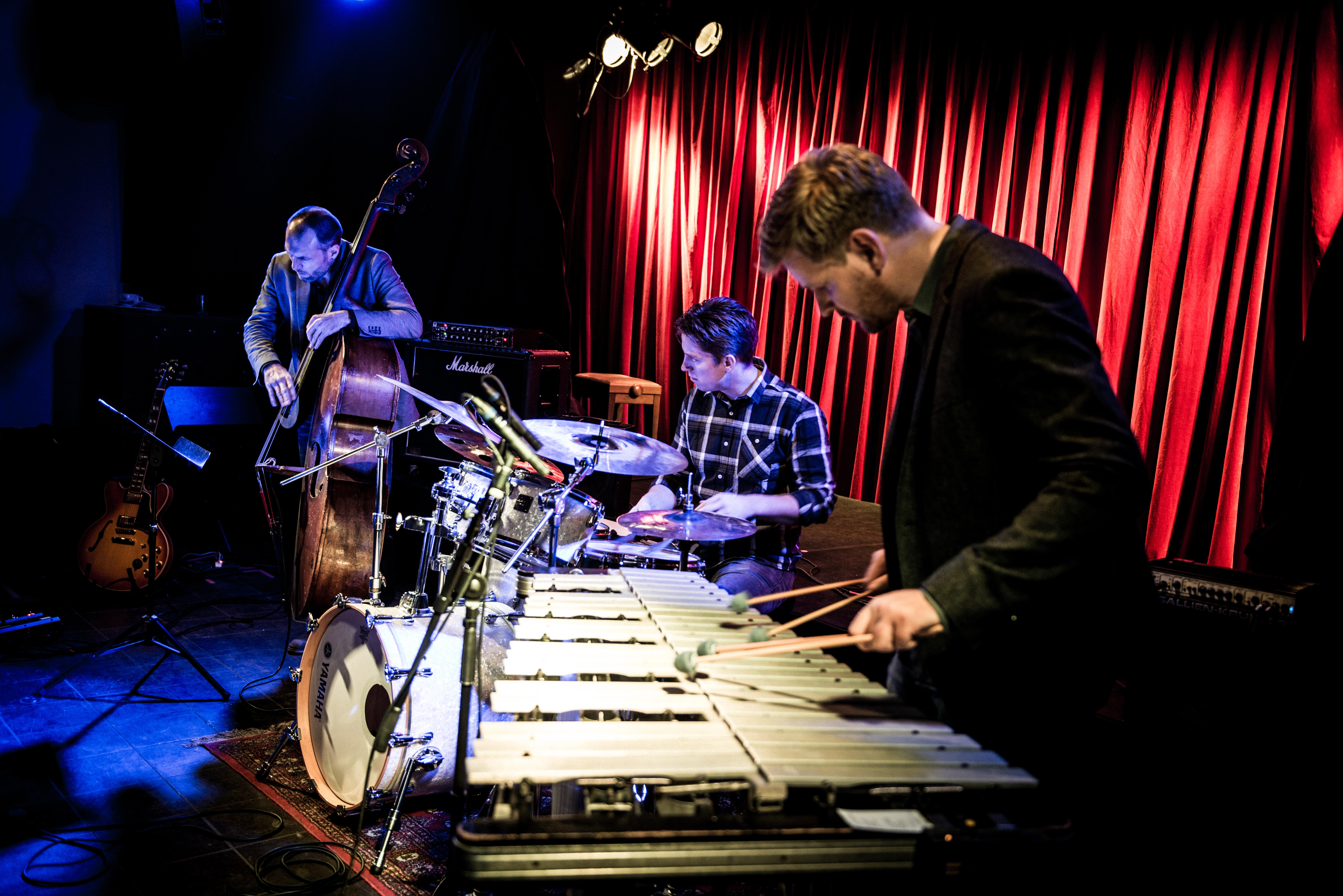 Jazzdiskurs 187 / Martin Fabricius Trio (DK) / 14.11.2017 / 20.30 Uhr / Ursprung